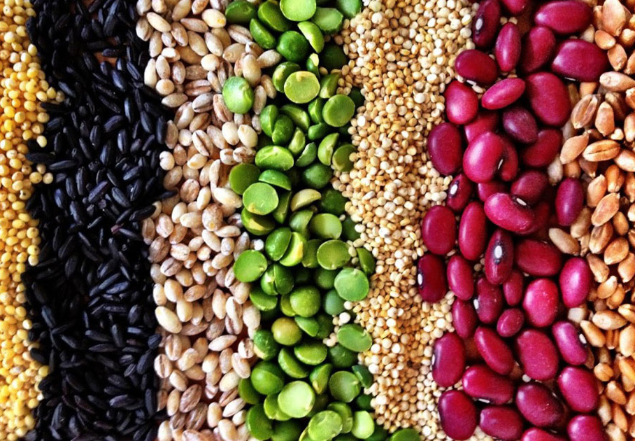 Different types of vegan protein